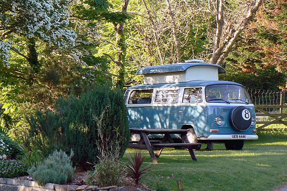 cornwall-campsite
