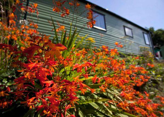 Top 10 reasons to explore Cornwall