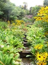 glendurgan gardens 2