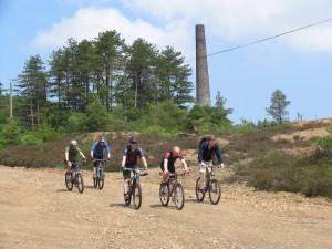 Tamar cycle trail by Ruth Davis