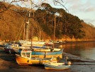 malpas sunset small