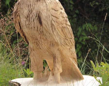 Buzzard made from sycamore