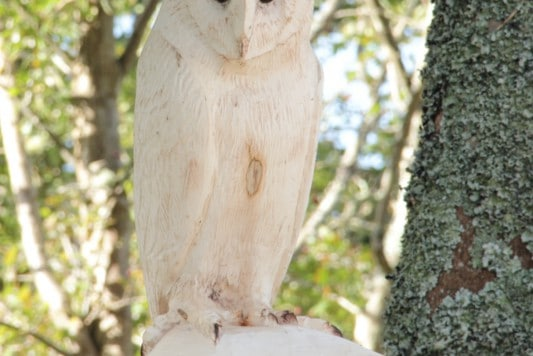 the Tehidy Barn Owl chainsaw carving